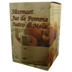 5 L carton pour bag-in-box, carré jus de pommes Vente par palette
