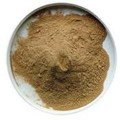 Malzextrakt (Pulver & flüssig)